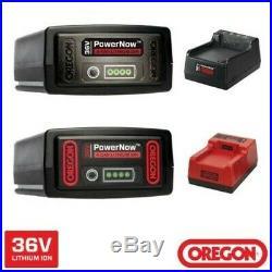 Oregon Batterie Pack Batterie Accu 2,4 Ah 4,0 Ah 6,0 Ah Chargeur Chargeur Rapide